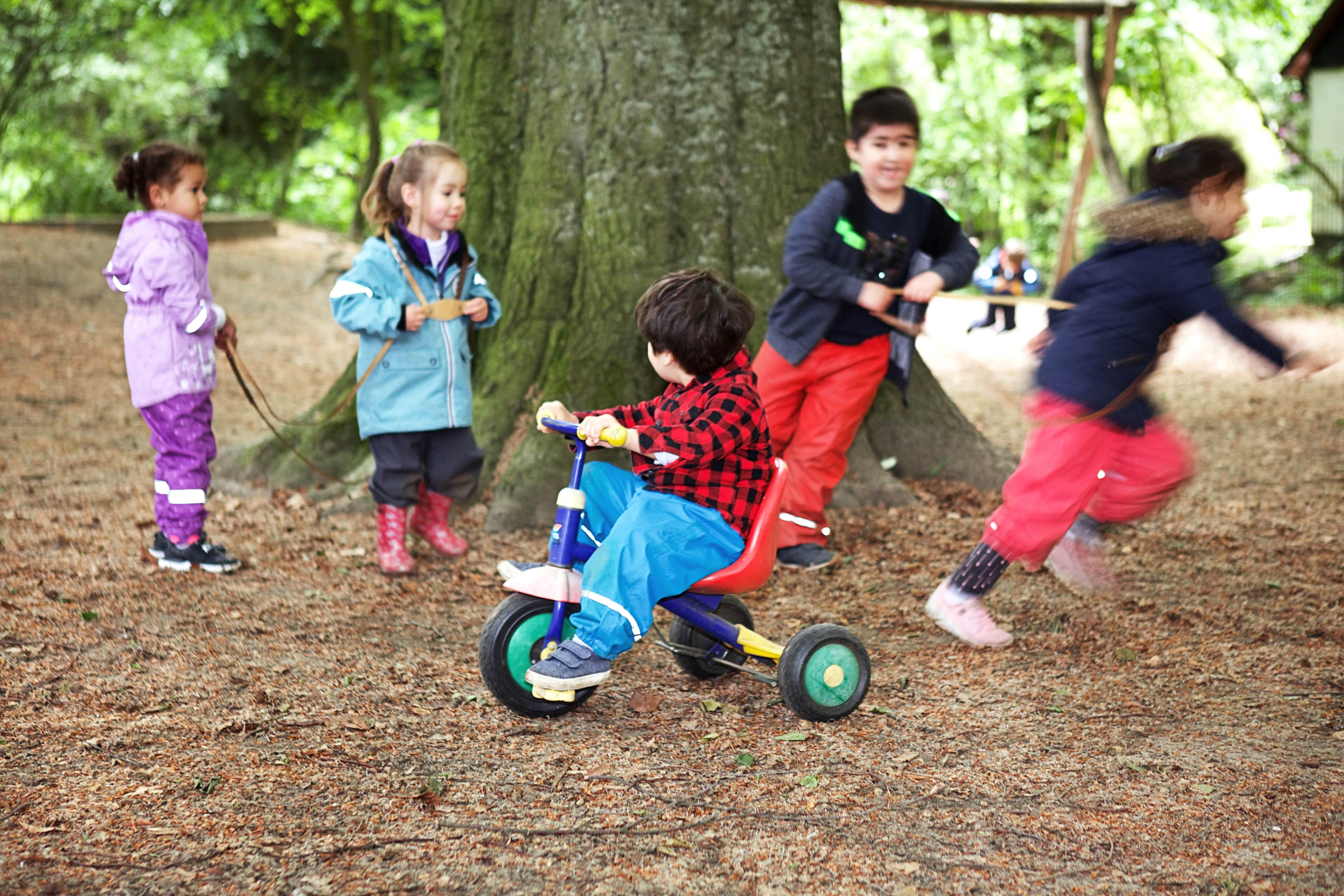 Kindertagesstätte Wurzelkinder Wandsbek Kita Montessori Kontakt
